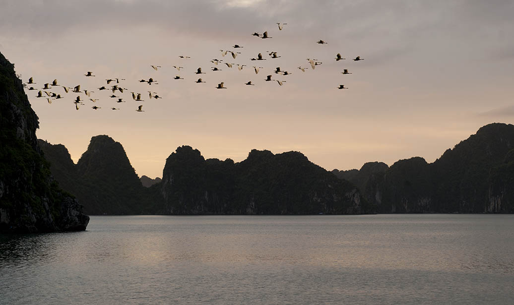 Ha Long Bay - Vietnam Travel Photography