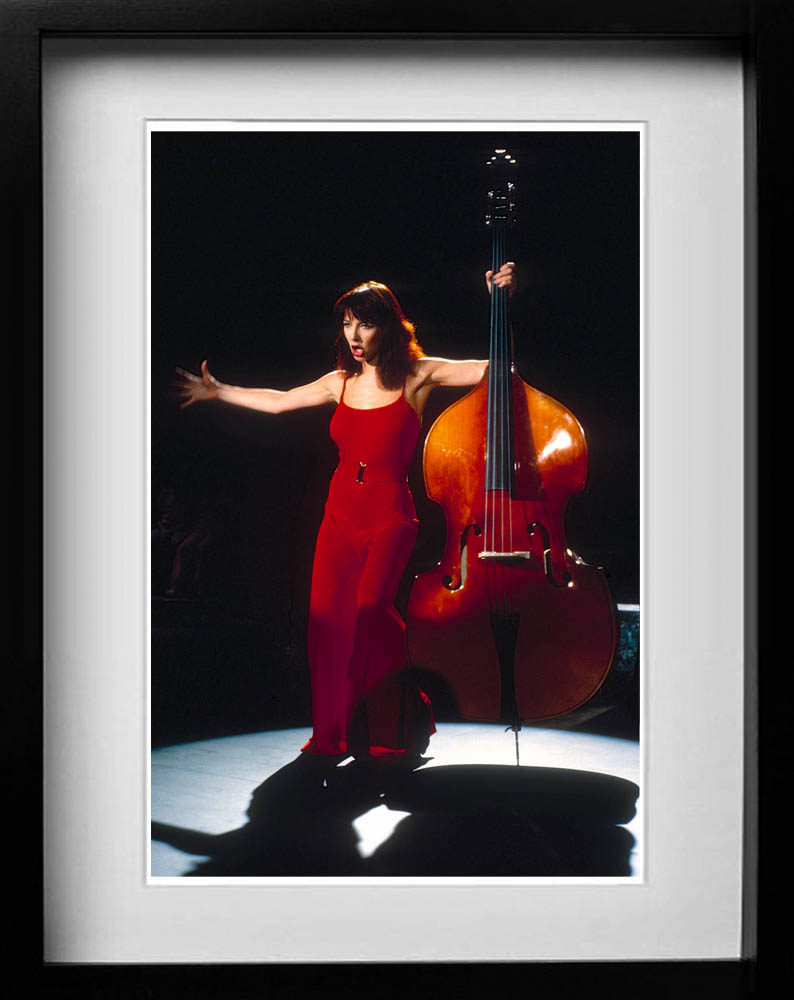 Kate Bush A gallery of some of the years most popular prints